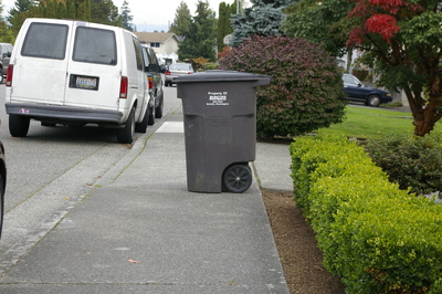 Wheelchair Barrier 3:  Many homeowners do not realize that putting their trashcan in the middle of the sidewalk blocks access for wheelchair users.