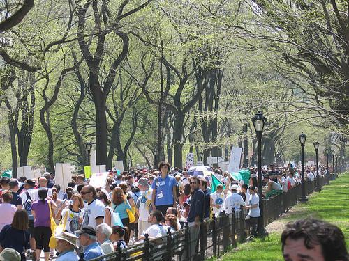 The 2009 Unity Walk in Progress