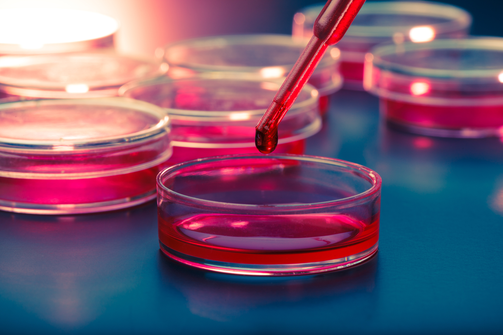 Stem Cell Treatment For MS - Stem Cell For MS
